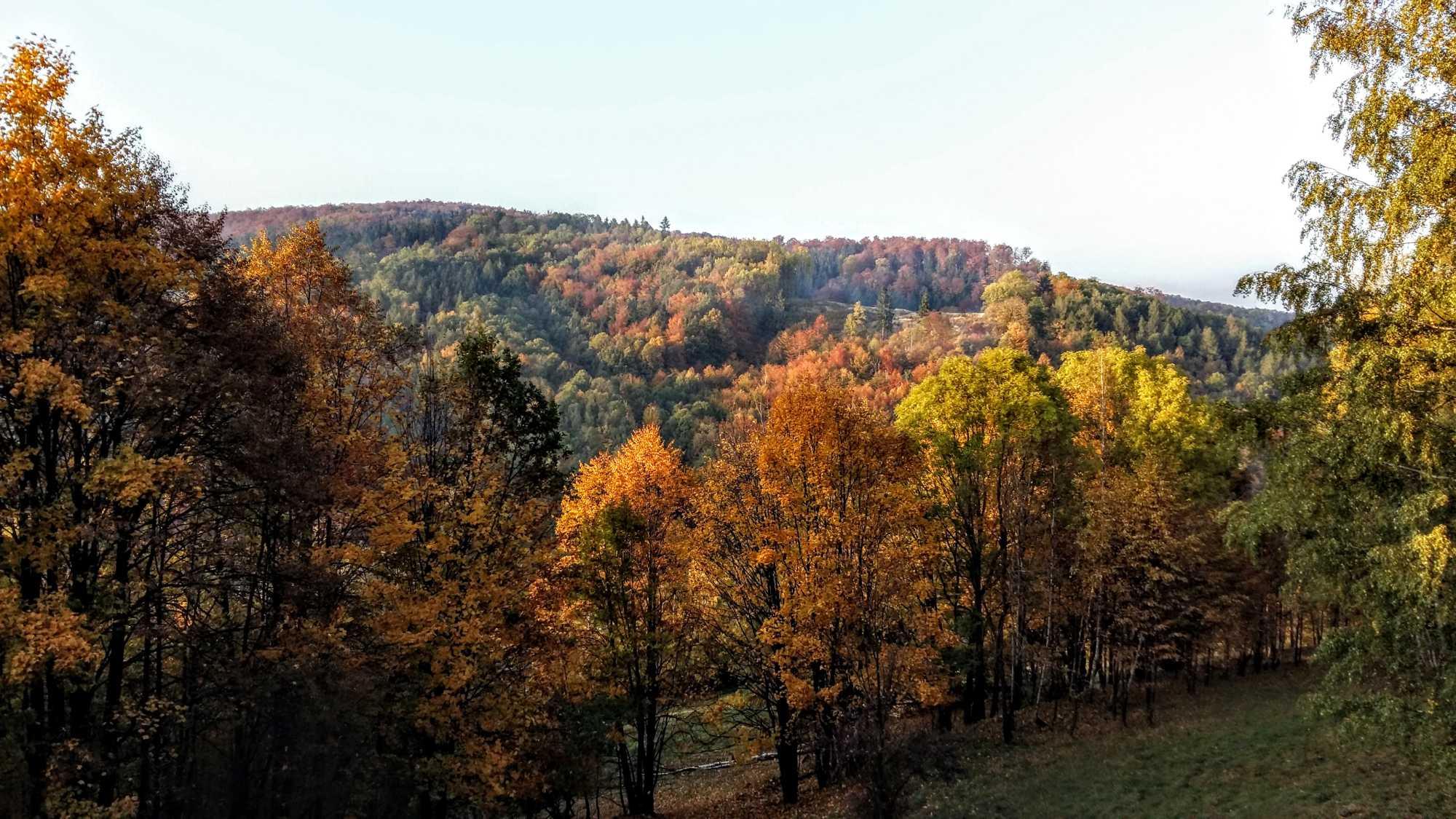 Listopad wGórach Sowich